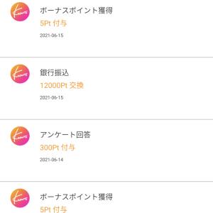 【Knowns】1000円分のポイントを現金に交換