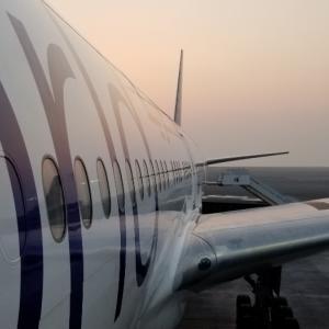 カタール空港に到着‼めっちゃ広いわ‼