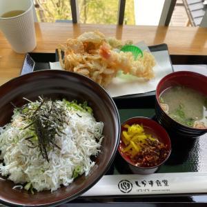 2021/5/1②(1日目)、しらす食堂でランチを食べたら、まずは高知へ!!!