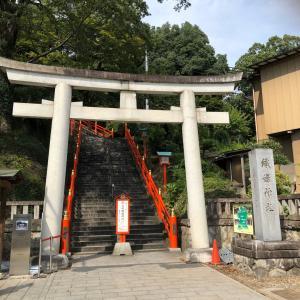 【39日目】〜カラフルな鳥居でいっぱい!足利織姫神社〜
