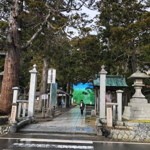 【58日目】〜人面魚ブームはここからきた?!善寳寺へ〜
