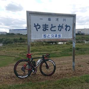 大和川、、、異常なし!