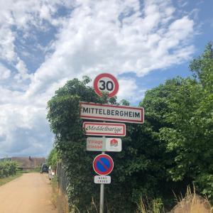 だった650人の村に18軒のワイナリー⁉️【Mittelbergheimアルザスワイン街道の村】