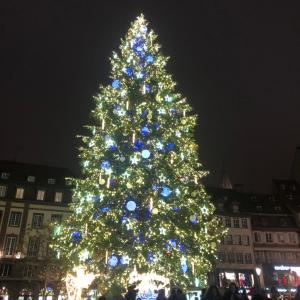 アルザス ストラスブールのクリスマスイルミネーションが始まった