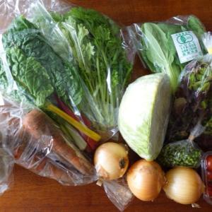 オーガニック野菜が運気アップに?