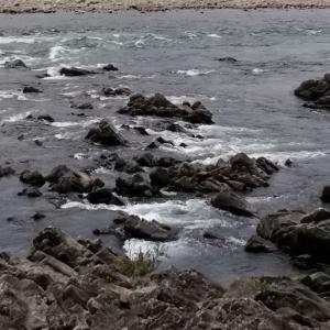 長良川中央連チャン釣行