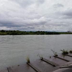 今日の長良川