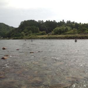 最初と最後は 長良川中央釣行