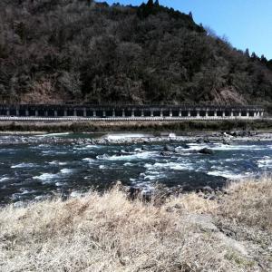 郡上長良川渓流初釣行