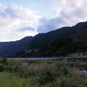 長良川 郡上連荘釣行 彼岸花も咲き終盤
