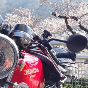 国産旧車女子ツー(3月31日)