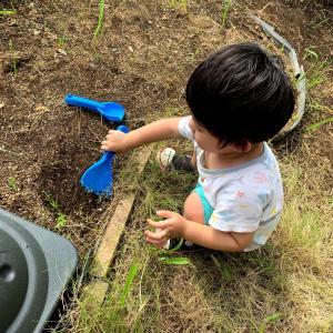 【1歳9ヶ月】庭遊びにはまる息子