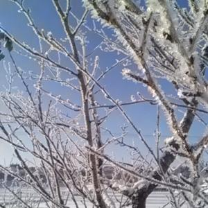 地球寒冷化?