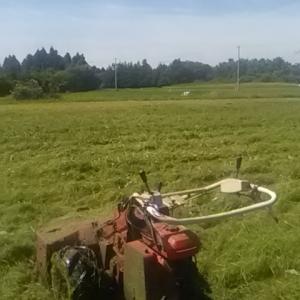 草刈り最終章