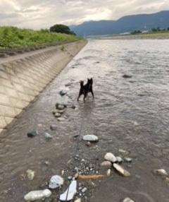 川遊び大好き♡