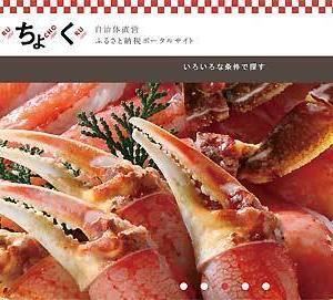 大阪府泉佐野市が、ふるさと納税直営サイトを開設