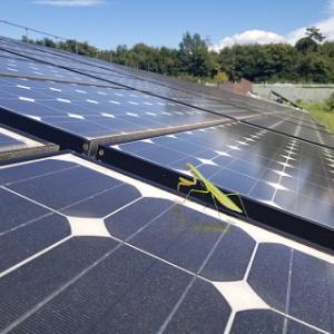 どやって1億稼ぐか③ 太陽光発電