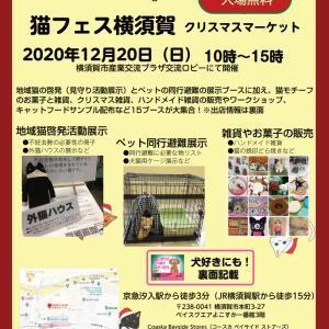 猫フェス横須賀開催致します
