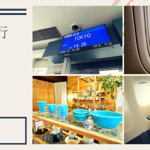 <SFC修行3日目>那覇滞在4時間でプチ観光&グルメを満喫 からのラウンジはしごで大充実の1日
