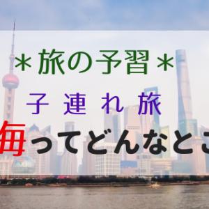 <旅の予習>2019年夏の旅行は子連れで上海!上海ってどんなところ?