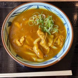 丸亀製麺の『カレーうどん』がお肉たっぷりにカレーのとろみが美味しい!