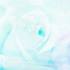 女神ヴィーナスの金星クリスタルフローライト