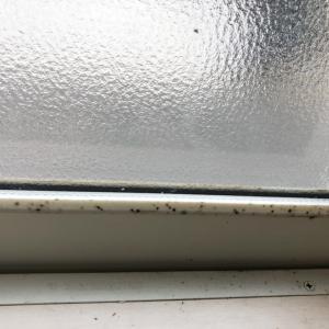 窓のサッシ掃除や最近のリビングダイニング、プチ模様替え
