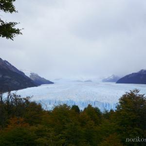 エル・カラファテで氷河トレッキング!?最高に楽しい氷の上の世界!!