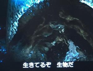 映画「エイリアン」を観ていました♪