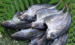 昭和の食卓:魚