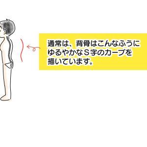 【フィットネス】ヒップシート検証