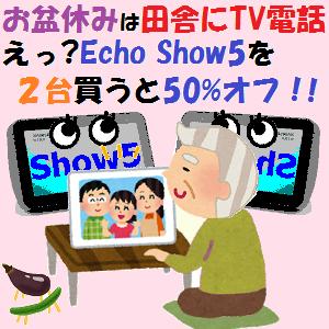 AmazonEcho:お盆休みは田舎にTV電話設置!!えっ?Echo Show5を2台買うと50%オフ!!