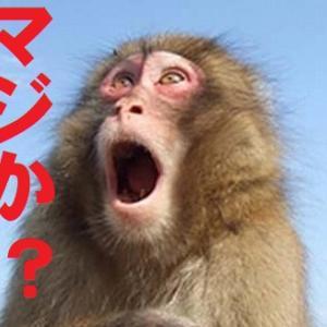 私が通う日本人エステ店
