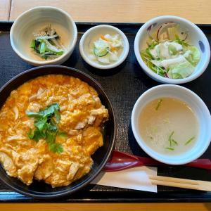 親子丼ランチ@仙台駅前「かんのや」さん