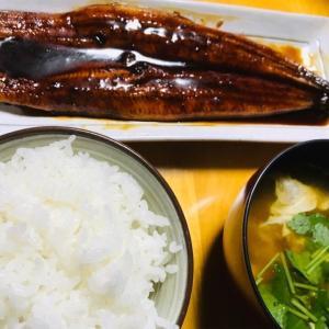 鰻食べ比べ 陣屋(中国産) VS ファミマ(鹿児島県産)