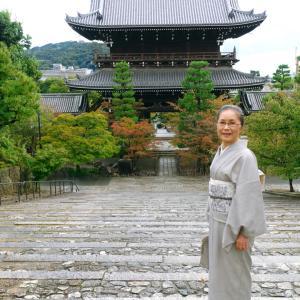 初秋の京都ウォーキング、共同研究打ち合わせ:淡鼠紬に白地墨手描き植物柄帯