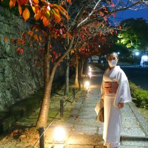 紬着物で初体験!くろ谷さん(金戒光明寺)ライトアップ、琴生演奏と紅葉のコラボ