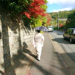 愛犬の思い出と名残の紅葉!秋色の泉屋博古館 グレージュ着物に金茶帯〆秋色コーデ