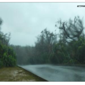 台風は警鐘なのか 〜琉球の風〜