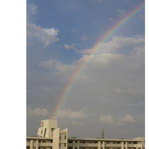 Season of Rainbow