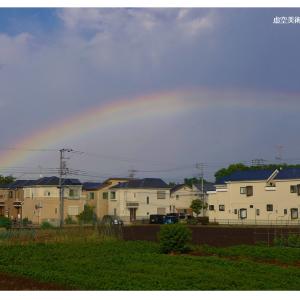 Twinned Rainbows