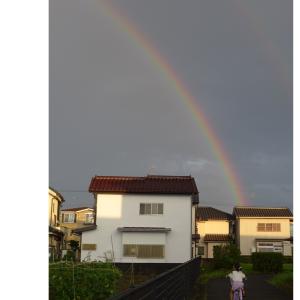 夏本番前の虹 Ⅱ