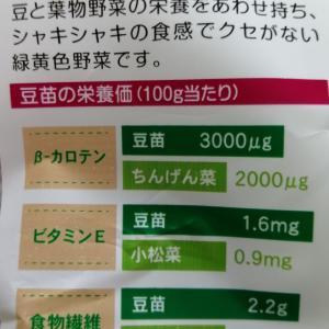 【食費節約】野菜高騰に影響されない野菜