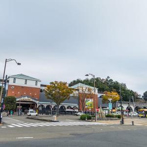 11月13日(水)日野市ウォーキング「秋川渓谷で あき色のあきる野を探す」