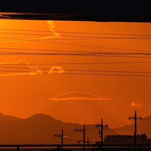 11月18日(月)ダイヤモンド富士-大栗川・堰場