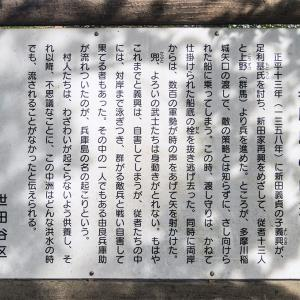 12月1日(日)野川を歩く-04-下見04最終回は兵庫島
