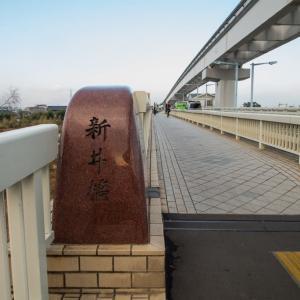 1月15日(水)ダイヤモンド富士-新井橋上流左岸◯