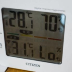 6月12日(金)気温が31℃にもなった!!