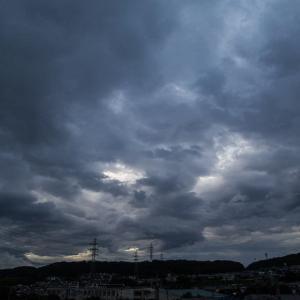 7月7日(火)小雨でも早朝散策+火曜はコーヒー豆買い出し
