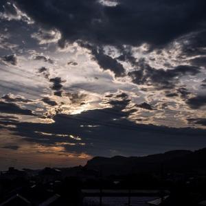 7月12日(日)久しぶりの富士山+カワセミ二態